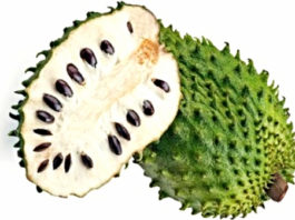 Почему мы ничего не знаем о фрукте который лечит рак?