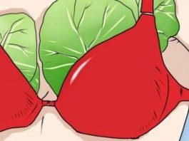 Что будет, если прикладывать капустные листы к груди? Через неделю я была поражена!