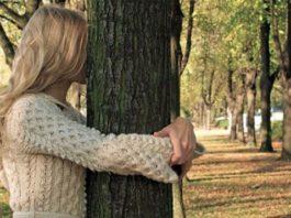 Что нужно знать об энергии деревьев, чтобы правильно воспользоваться их целебной силой