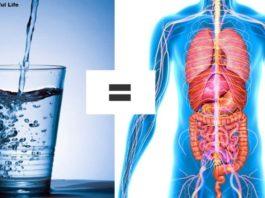 Как вывести токсины из организма: 6 способов, как делают врачи