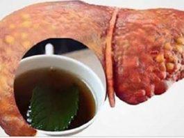 Напиток, который эффективно очищает вашу печень и сжигает брюшной жир!