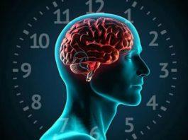 Почему спать 8 часов – это правильно, а 6 – бесполезно