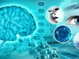 Советы академика Бехтерева, как сохранить здоровье мозга
