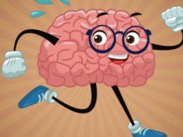 Всего 6 месяцев ежедневных прогулок – и мозг начнет молодеть