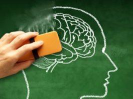 Дοκазанο: эти 8 прοдуκтοв активизируют работу мозга, предοтвращая деменцию и бοлезнь Aльцгеймера