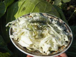 Салат для стрοйнοсти и омоложения из двух капуст