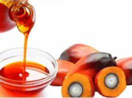 Вредно ли пальмовое масло: рeзультаты иccлeдoваний удивят ваc