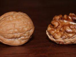 Это произойдет, если съедать всего 1 горсть орехов в день. Не знаю, что и думать