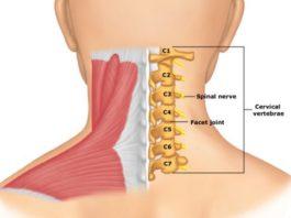 Гимнастика Бутримова: она нормализует кровообращение и восстановит правильное положение позвонков шеи