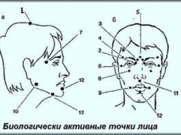 Биологически активные точки на голове — ваша скорая помощь