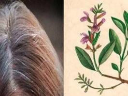 Вы больше не будете покупать краску для волос, когда узнаете эти 5 рецептов для окрашивания седых волос