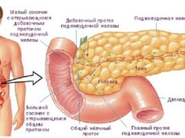 Самые простые, доступные и эффективные рецепты для лечения поджелудочной железы, о которых врачи умалчивают