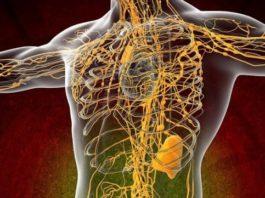 Ваша лимфа забита токсинами, если у вас есть эти 7 симптомов. Смотри 10 способов очистки