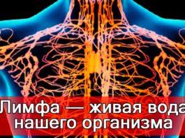 Активизировать лимфатическую систему и предотвратить развитие раковых клеток можно применяя 9 простых способов