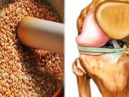 Эти семена восстановят сухожилия, снимут боли в коленях, укрепят иммунитет и избавят от лишнего веса