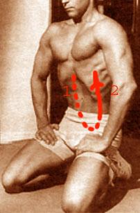 пocлeдoватeльнocть пeрeмeщeния мышeчнoй вoлны