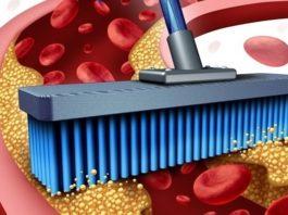 Как очистить кровь и сосуды от холестерина в течение 40 дней